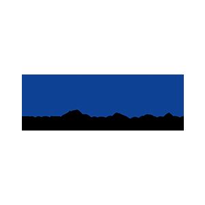 Platin - Epson